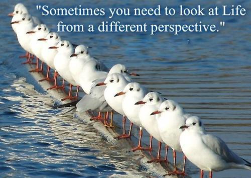 Perspective quote